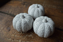 Load image into Gallery viewer, Black & Silver Granite Pumpkin (NOT GUARANTEED FOR HALLOWEEN)