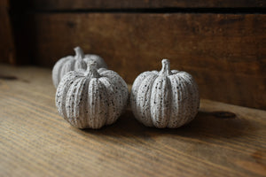 Black & Silver Granite Pumpkin (NOT GUARANTEED FOR HALLOWEEN)