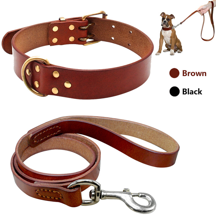 Everlasting Real Leather Dog Collar & Leash
