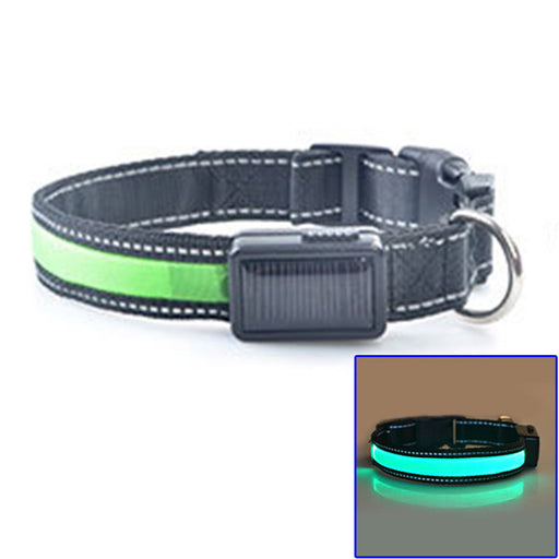 USB Solar Rechargeable LED Dog Collar