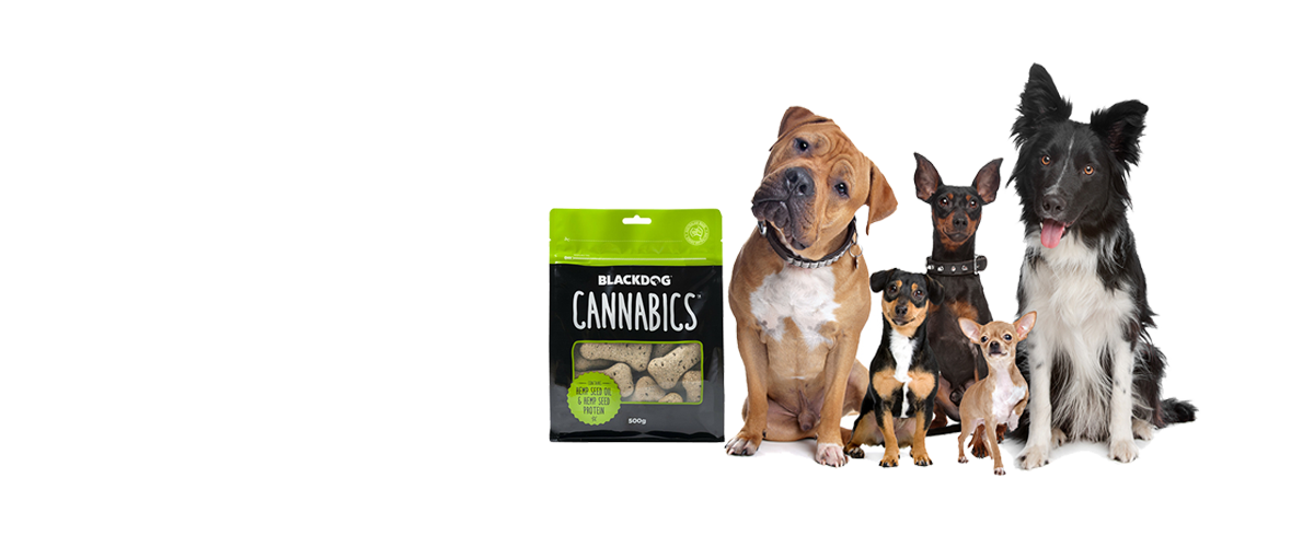 Hemp Dog Biscuits