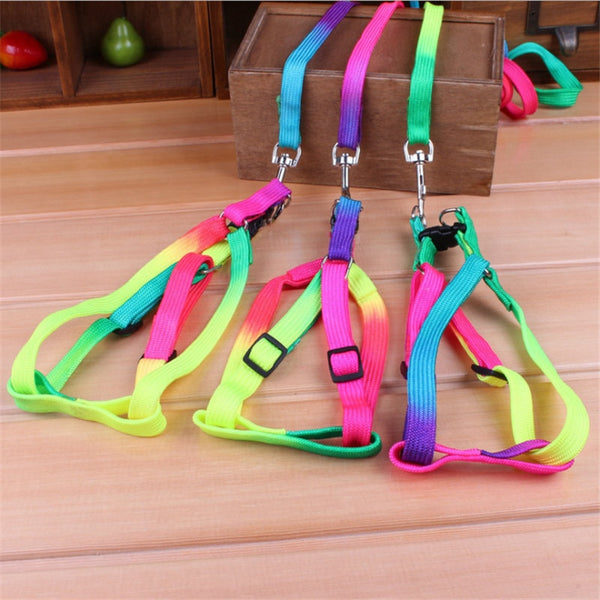 Soft Durable Traction Rope Nylon 120cm Colorful Pet Dog Collar Leash - doggiebox Australia