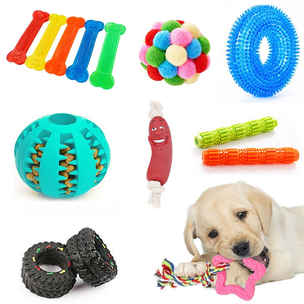 Pet Molar Teeth Cleaner Playing Training Squeaky Toy Chew - doggiebox Australia