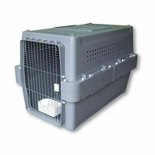 Airline Approved Pet Crates for Dogs and Cats PP70 (XX Large) - doggiebox Australia