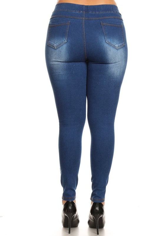 Timeless Wash Jeggings - CURVY