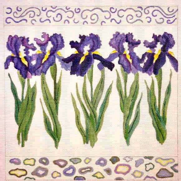 182716 Rhapsody in Blue Irises