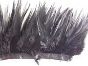 Black Ostrich Feathers