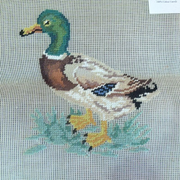 Four Wives B6012 Duck