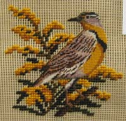 Four Wives C0027 Nebraska Meadowlark and Goldenrod