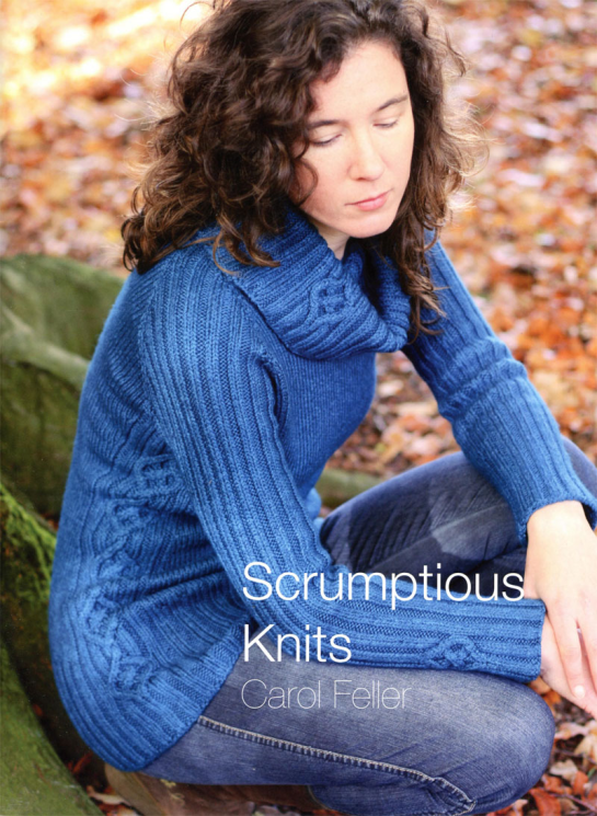 Scrumptious Knits by Carol Feller