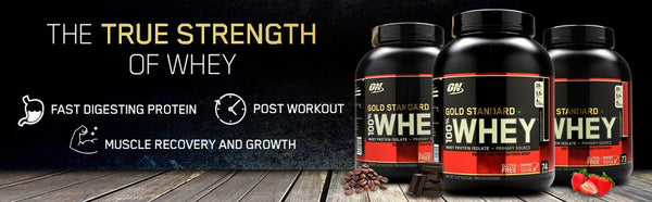Optimum Nutrition 100 Whey Gold Standard 10lbs The Nutri X