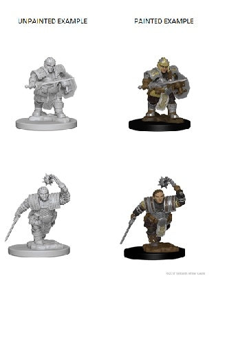 D&D Miniatures Dwarf Fighter Female