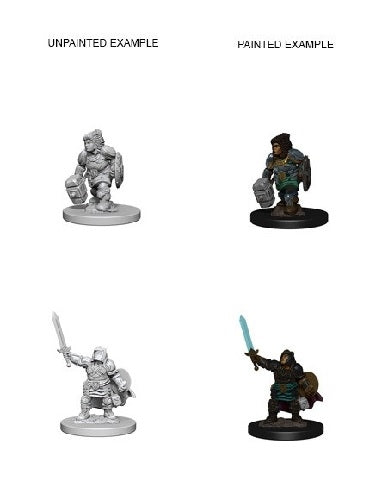 D&D Miniatures Dwarf Paladin Female