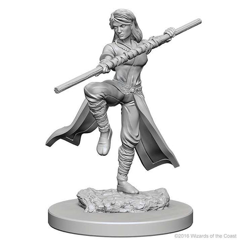 D&D - Unpainted Miniatures Human Monk Female