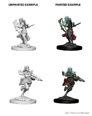 D&D Miniatures Air Genasi Rogue Female