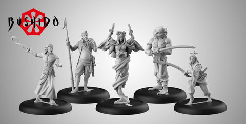 Image of Bushido Jung Pirates Starter Set