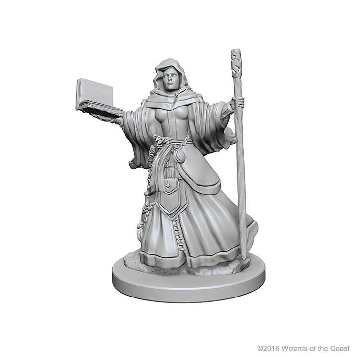 D&D Miniatures Human Wizard Female
