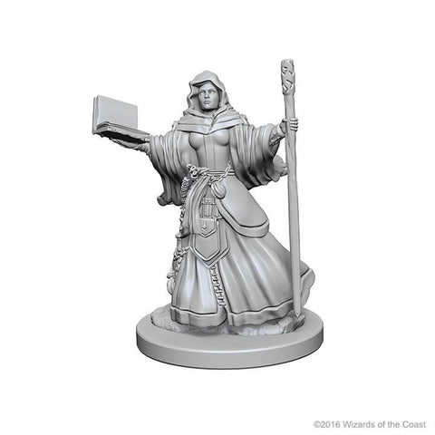 Image of D&D Miniatures Human Wizard Female