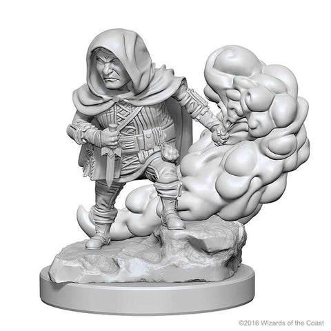D&D Miniatures Halfling Rogues Male