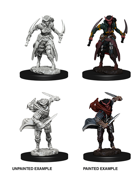 D&D Miniatures Tiefling Rogue Female