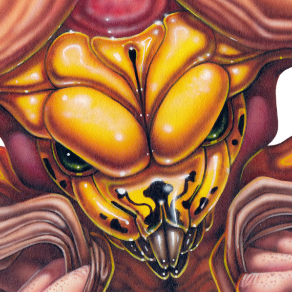 Red Fracture - Close up of Wasp of the Flesh - Depicted, the face of a bright yellow wasp