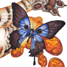 Load image into Gallery viewer, Red Fracture - Close up of a butterfly with a skull shape on it's wings.