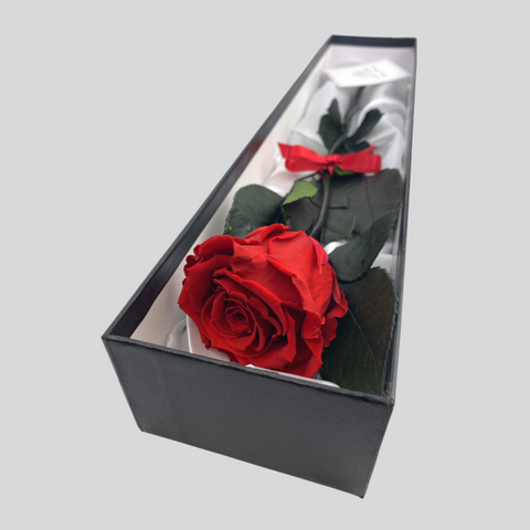 Single Rose Gift Box