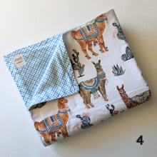 Load image into Gallery viewer, Children's Blankets- SKU#893102