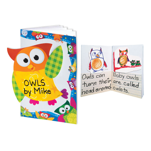 A1018 All About Owls Book Learning FUN Activity