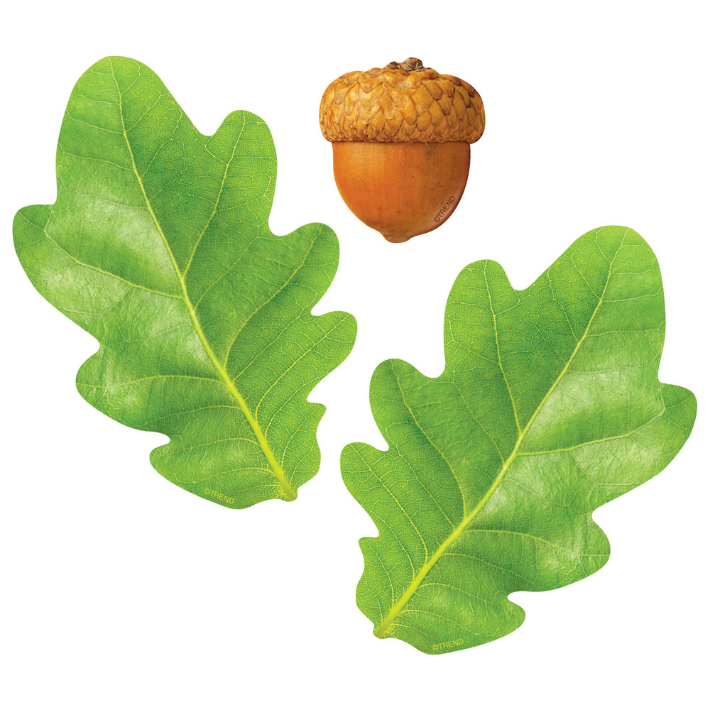 T10097 Accent Leaves Acorns