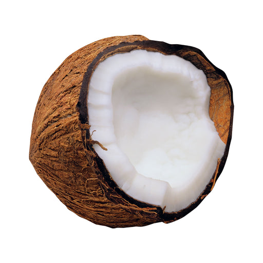 T10585 Accent Coconut