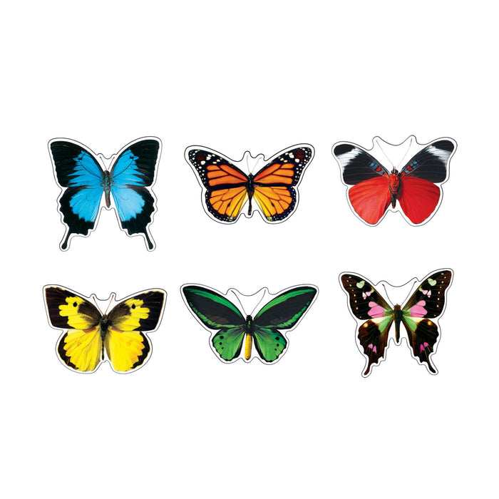 T10835 Accents Butterflies
