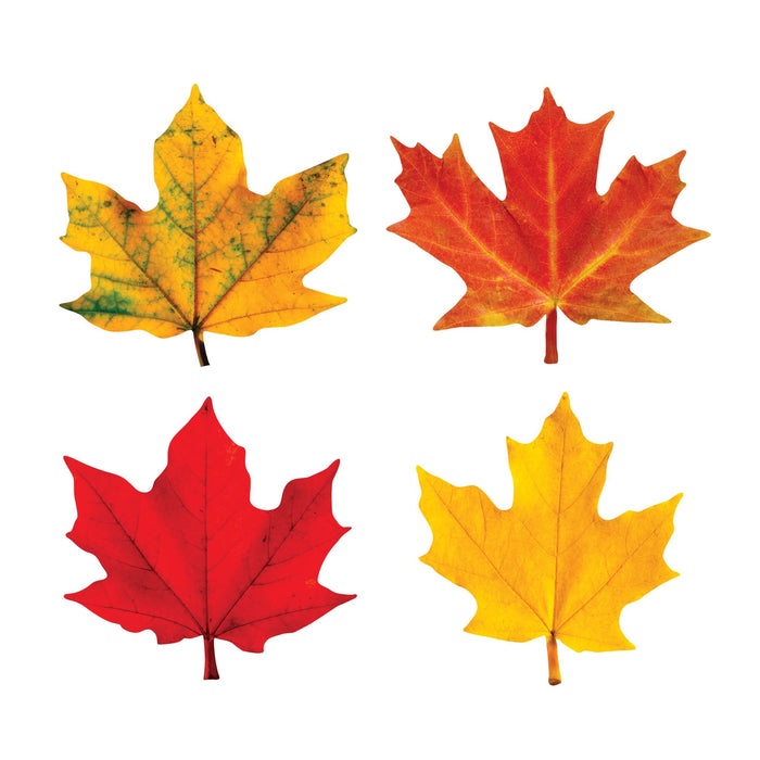 T10836 Accent Fall Maple Leaves