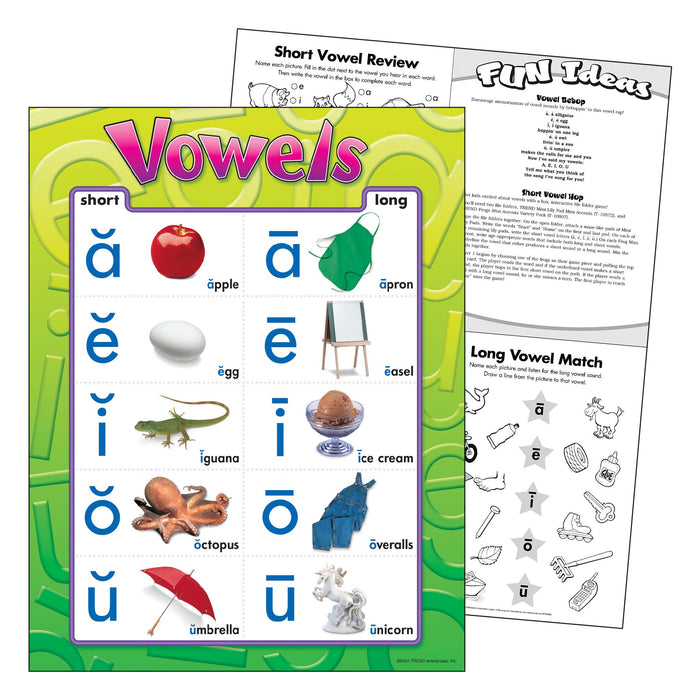 T38032 Learning Chart Vowels
