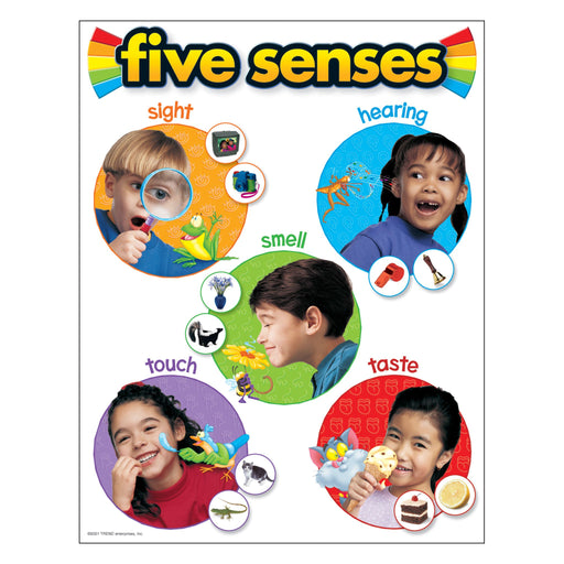 T38051 Learning Chart Five Senses