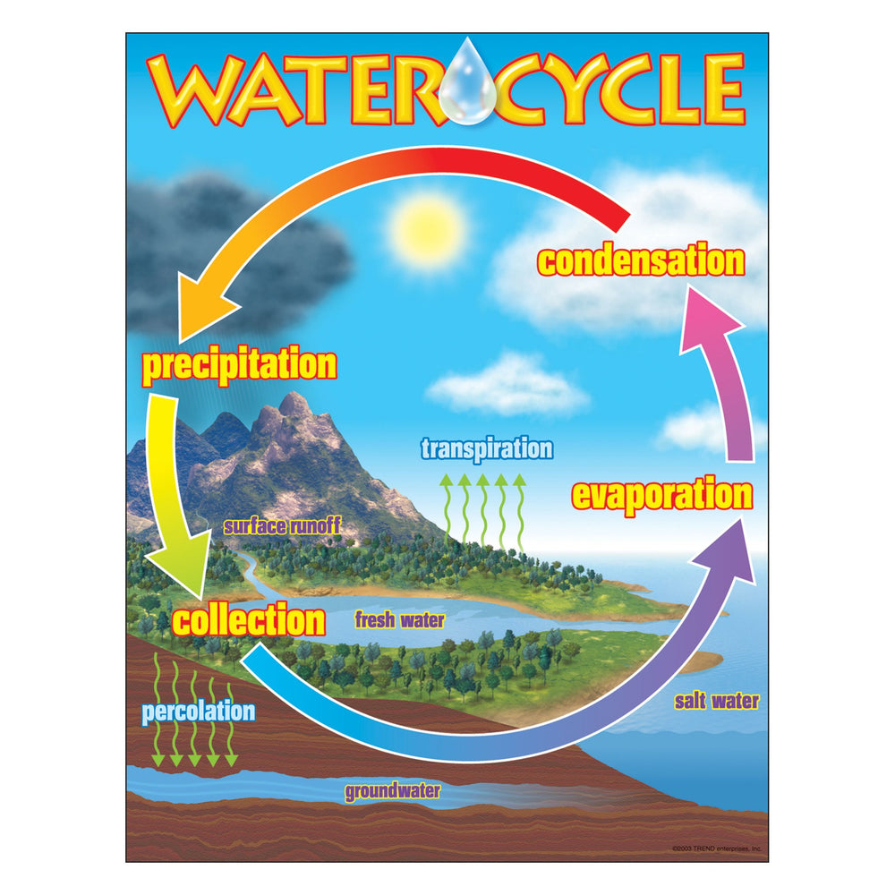 T38119 Learning Chart Water Cycle