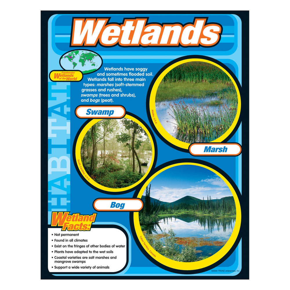 T38150 Learning Chart Wetlands Habitat