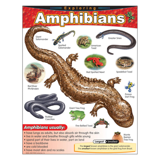 T38182 Learning Chart Exploring Amphibians