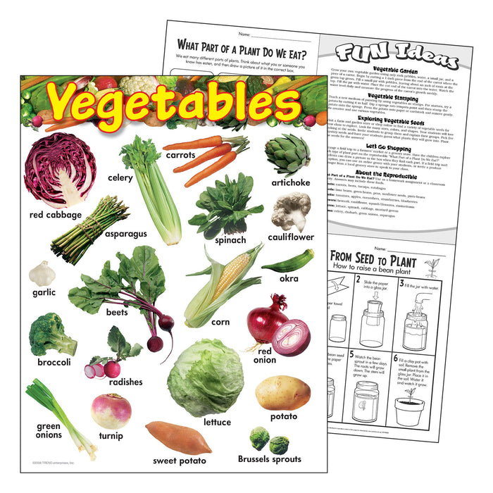 T38248 Learning Chart Vegetables