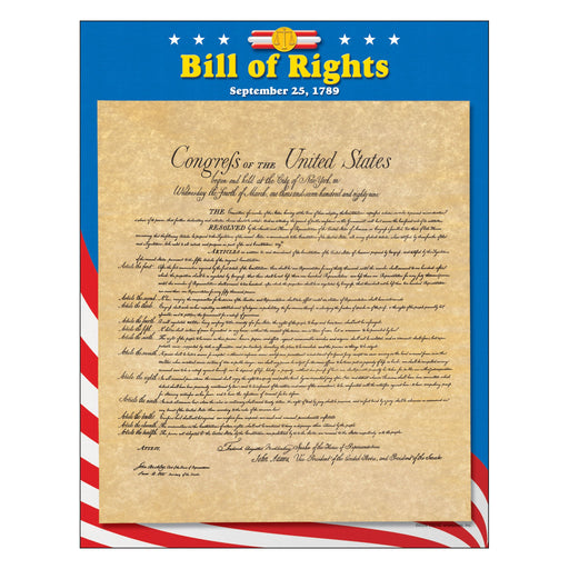 T38276 Learning Chart Bill Rights