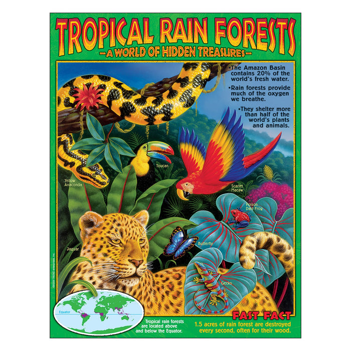T38319 Learning Chart Rainforest