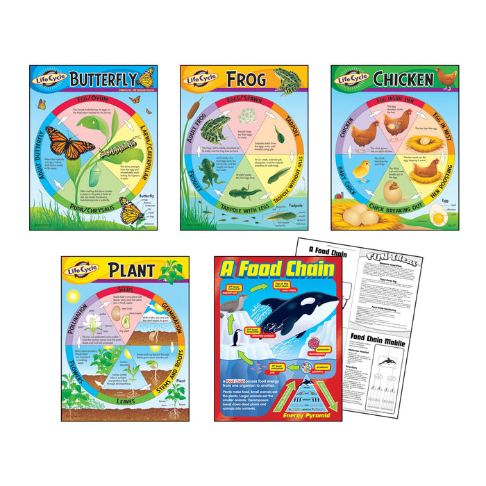 T38934 Learning Chart 5 Pack Life Cycles