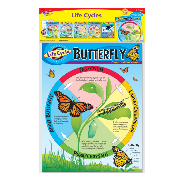 T38934 Learning Chart 5 Pack Life Cycles Package