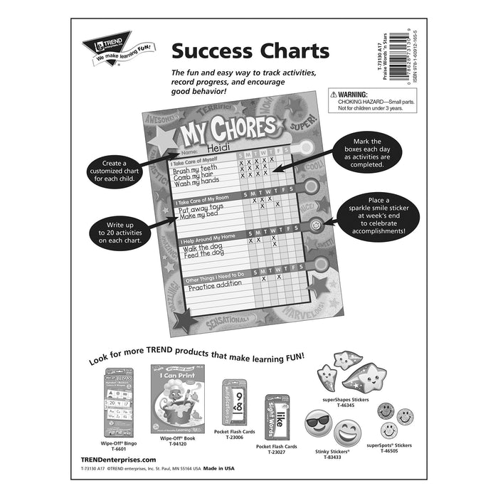 T73130 Incentive Chore Chart Praise Words Star Package Back