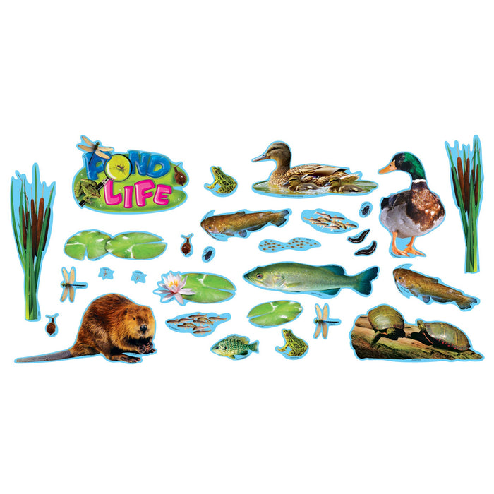 T8601 Bulletin Board Pond Life
