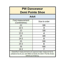 Load image into Gallery viewer, PW Demi Pointe Shoe
