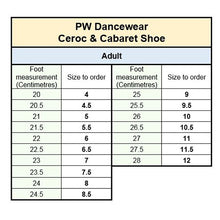 Load image into Gallery viewer, PW Ceroc & Cabaret Shoes
