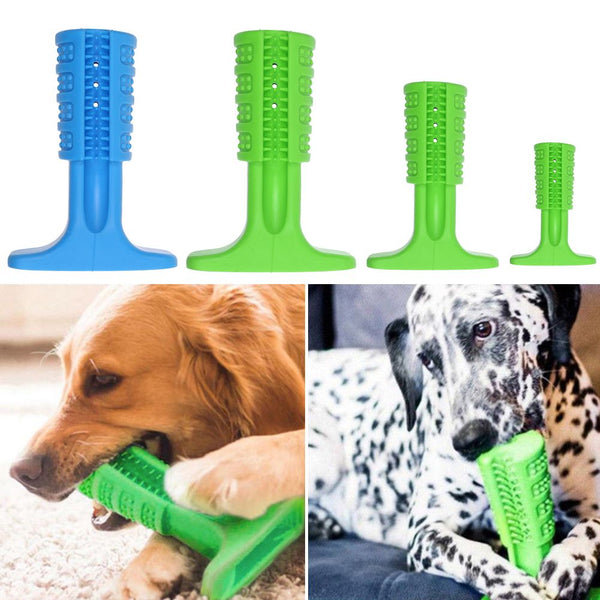 Toothbrush For Dogs -Chew Dog Bristly Brushing Stick Cleaning Bite Resistant