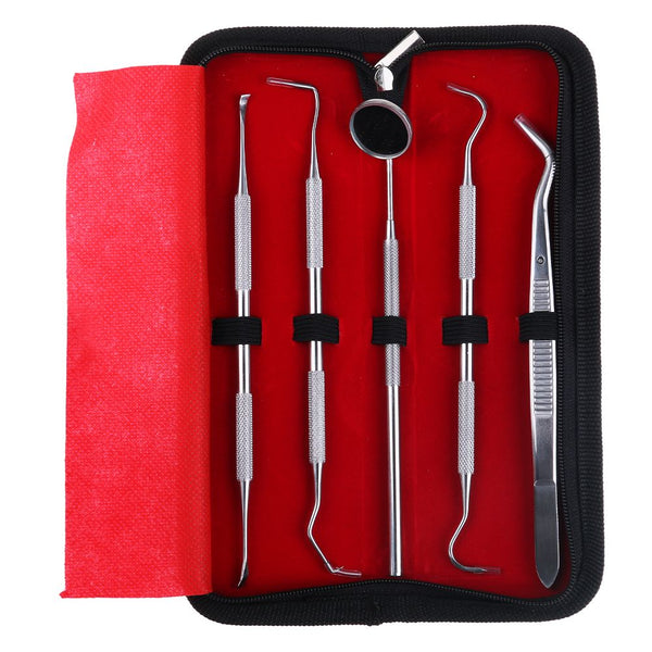 Stainless Steel Dentist Prepared Tools Kit Case Dental Pick Clean Oral Hygiene