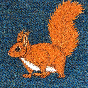 Red squirrel project bag